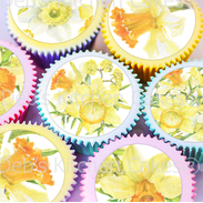 Daffodil Cake Toppers